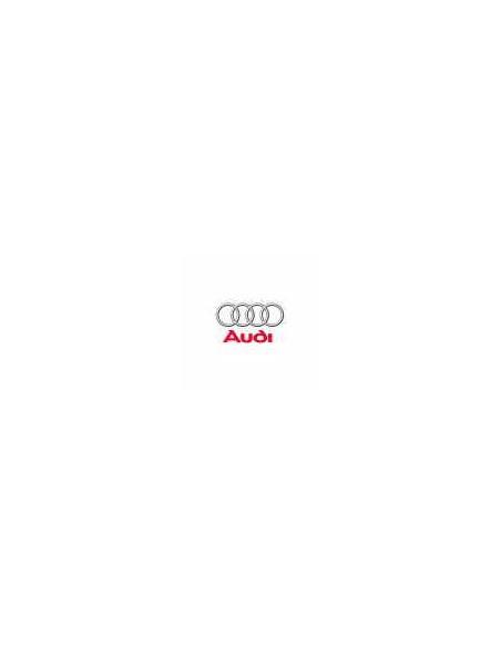 Dump Valve - Audi