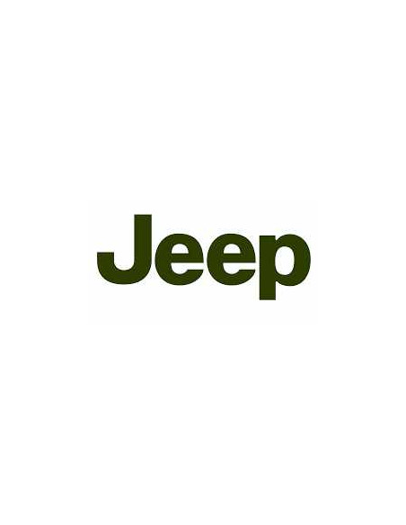 Dump Valve - Jeep